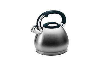 Чайник нержавіючий Maestro - 4,3 л