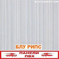 Панель пластиковая (ПВХ) Блу Рипс (ламинированная) Decomax, 250х2700х8 мм.