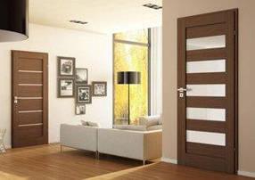 Міжкімнатні двері з покриттям Экошон, Фініш плівка, Natural look