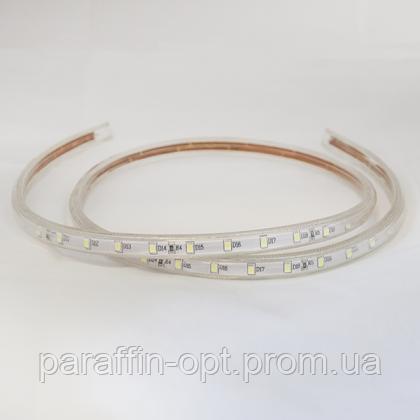 Стрічка світлодіодна С 5382  60 LED/m, 220V, 6W, 3000K, IP65, фото 2