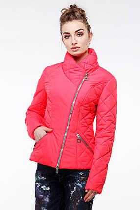 Женская стильная весенняя куртка Венисуэлла р.46, фото 2