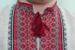 Купить вышиванку Киев недорого | Купити вишиванку Київ недорого, фото 2