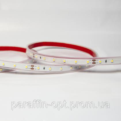 Стрічка світлодіодна С 8253, 60 LED/m, 24V, 5800K-6000K, IP65, фото 2