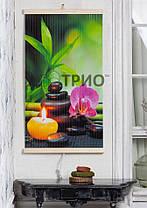 Настенный пленочный обогреватель (картина) ГАРМОНИЯ Трио Украина, фото 2