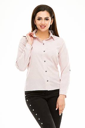 Блузка 287 розовая  в горох размер 46, фото 2