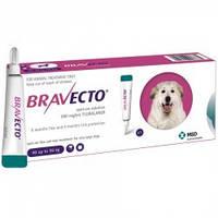 Бравекто Spot-On 40-56 кг