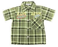 Рубашка Droga 26 Клетка 80