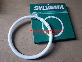 Лампа кольцевая Sylvania T5 CIRCLINE PLUS 22W/830 2GX13