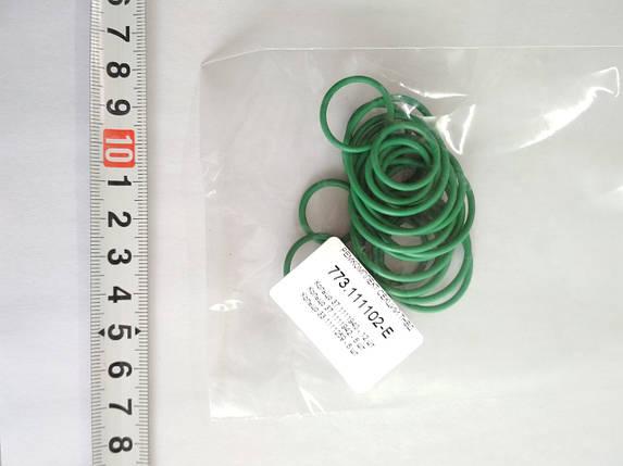 Ремкомплект секций 773-111102, ТНВД 773, 363. комплект для 6 шт. секций, фото 2