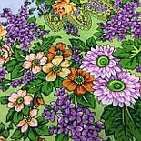 Цветет сирень 1360-10, павлопосадский платок шерстяной  с шелковой бахромой, фото 8