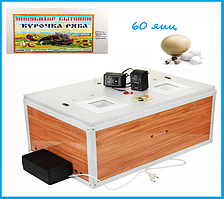 "Инкубатор ""Курочка ряба"" на 60 яиц  (цифровой терморегулятор) автоматический переворот"