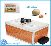 "Инкубатор ""Курочка ряба"" на 60 яиц  (цифровой терморегулятор) автоматический переворот, фото 1"