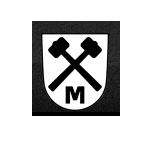 Molot Gun