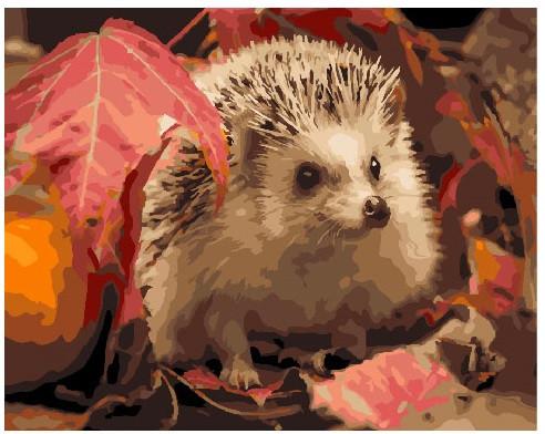 Картина по номерам Ёж в листьях, 40x50 см., Brushme