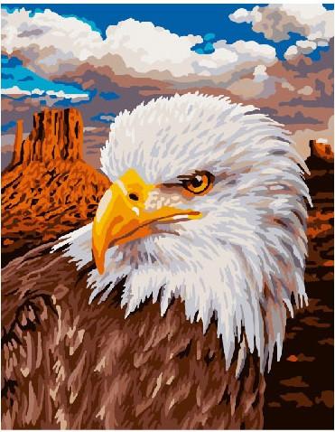 Картина по номерам Орёл, 40x50 см., Brushme