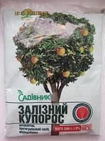 Фунгицид Железный купорос 1 кг