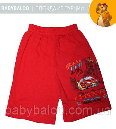 """Хлопковые шорты для мальчика """"Rasing"""" (от 3 до 7 лет), фото 2"""