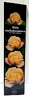 Роза чайно-гибридная Кремово-Желтая 07 1шт Польша, фото 1