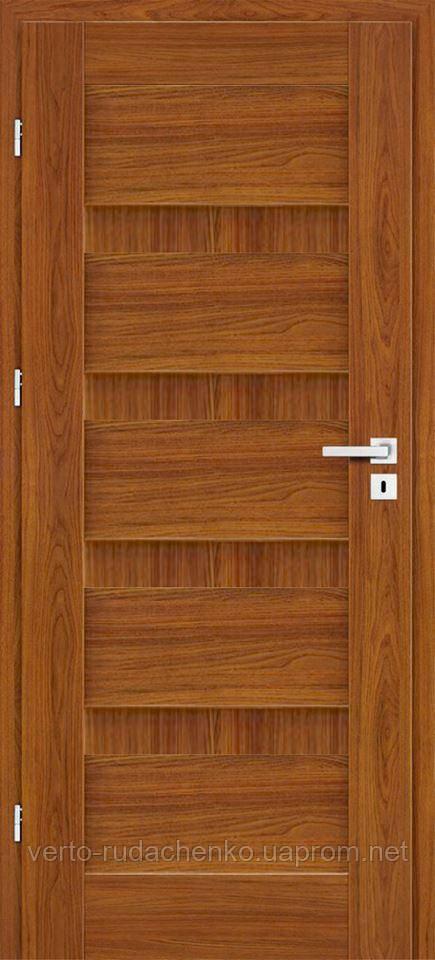 Двери EcoDoors VIENTO 1
