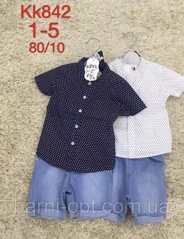 Комплекты на мальчика оптом, S&D, 1-5 pp, фото 2
