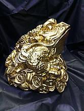 Жаба в золоте большая