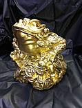 Жаба в золоті велика, фото 2