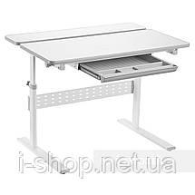Парта-трансформер для школьника Fundesk Colore Grey, фото 3