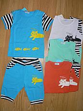 Трикотажні комплекти для дівчаток оптом, Aquamarine, 62-92 р., фото 2