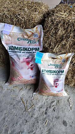 """Комбикорм для страусов TM """"Стандарт Агро"""", фото 2"""
