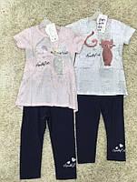 Комплекты для девочек оптом, S&D, 4-12 рр