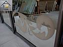 Фасады (двери) для шкафов купе - раздвижные системы художественное матирование (пескоструй), фото 4
