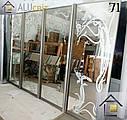Фасады (двери) для шкафов купе - раздвижные системы художественное матирование (пескоструй), фото 6