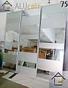 Фасады (двери) для шкафов купе - раздвижные системы художественное матирование (пескоструй), фото 7