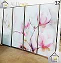 Фасады (двери)  фотопечать для шкафов купе, гардеробных, фото 6