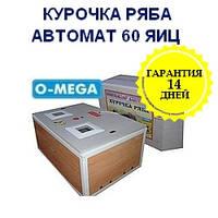 Инкубаторы автоматические Курочка Ряба на 60 яиц