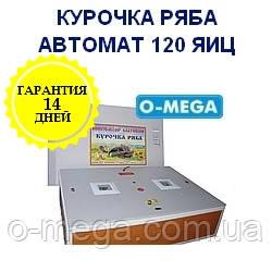 Инкубаторы автоматические Курочка Ряба на 120 яиц