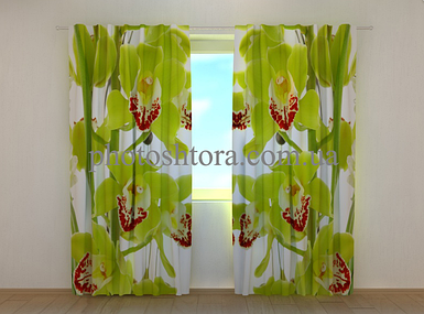 """Фотошторы """"Лианы орхидей"""" 250 х 260 см цветы фото штори шторы с рисунком"""