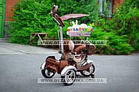 Детский трехколесный велосипед Lexus Trike KR-01-A. Коричневый. Надувные колеса