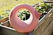Лейка Quut Cana 1L розовая (170709), фото 3