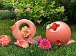 """Лейка """"CANA"""" 1L (цвет розовый) QUUT 170709, фото 4"""