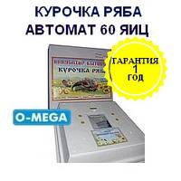 Автоматические инкубаторы Курочка Ряба на 60 яиц литой пенопластовый корпус