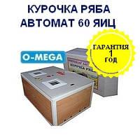 Автоматические инкубаторы Курочка Ряба на 60 яиц