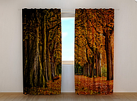 """Фотошторы """"Осень 3"""" 250 х 260 см природа фото штори шторы с рисунком"""