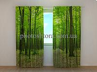 """Фотошторы """"Зеленый парк"""" 250 х 260 см природа лес фото штори шторы с рисунком"""
