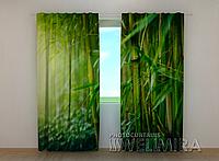 """Фотошторы """"Бамбуковый лес"""" 250 х 260 см природа фото штори шторы с рисунком"""