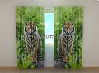 """Фото шторы """"Два тигра"""" 250 х 260 см природа фото штори шторы с рисунком"""