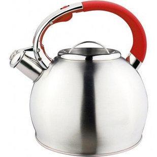 чайник нержавеющий_фото
