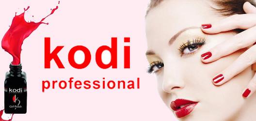 Kodi professional  купить