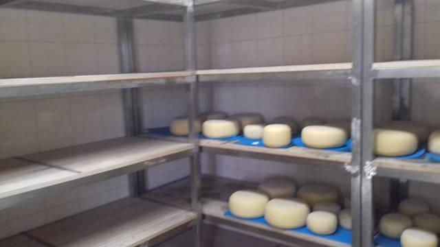 Камера дозревания сыров (+11..+13 С), Днепропетровская область 6