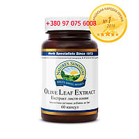 Листья Оливы (Olive Leaf Extract)